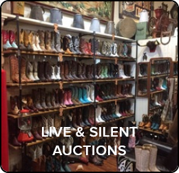 Click for Preview of Live Auction Page